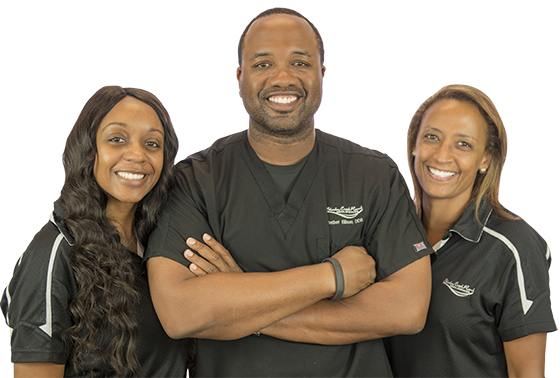 Pearland Dentists - dental team
